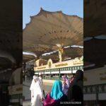 Selawat dan Ziarah Masjid Nabawi